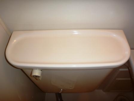 トイレ水タンク清掃後の写真