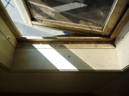 窓ガラスのそうじ前の写真