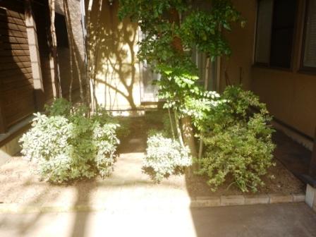 東京都世田谷区、お庭の手入れ・草むしり・草刈りの写真