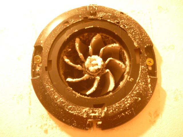 大田区、トイレ換気扇分解クリーニング前の写真