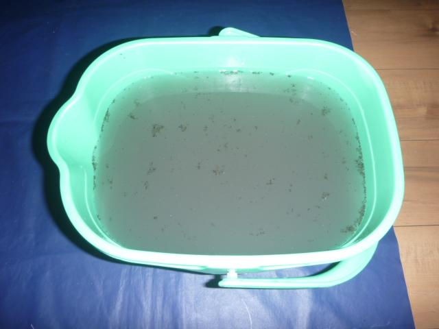 大田区、自動フィルターお掃除機能付きエアコンクリーニング汚水写真