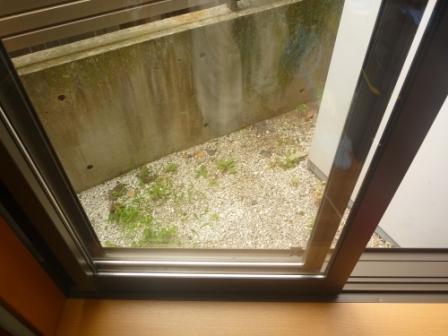 窓ガラスクリーニング後の画像