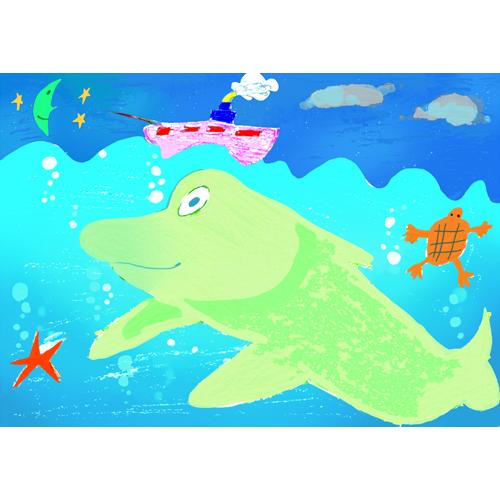 イルカと亀/坂本 収