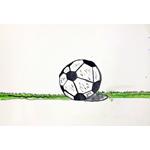 近藤拓海/しばふの上にあるサッカーボール