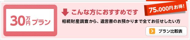 30万円プラン