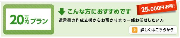 20万円プラン