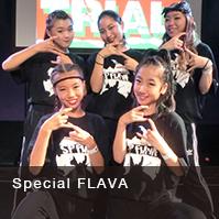 Special FLAVA
