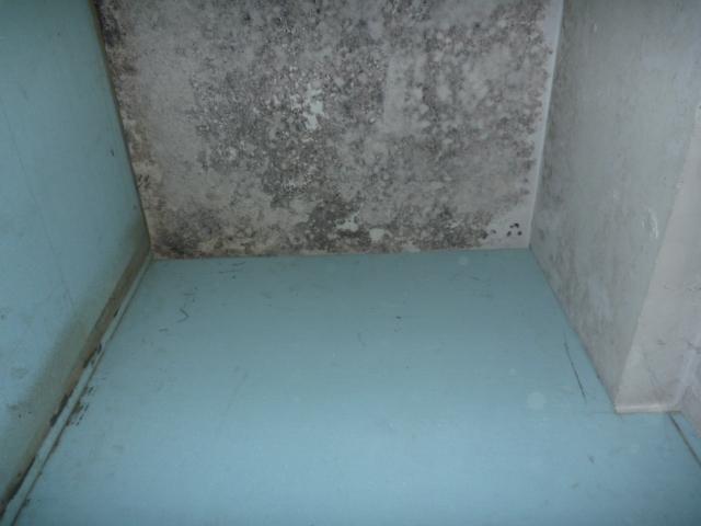 物置部屋内の清掃+カビの臭い消し、除菌・消臭