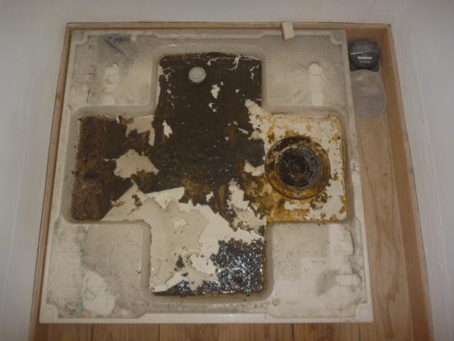 神奈川県川崎市の洗濯機分解クリーニング