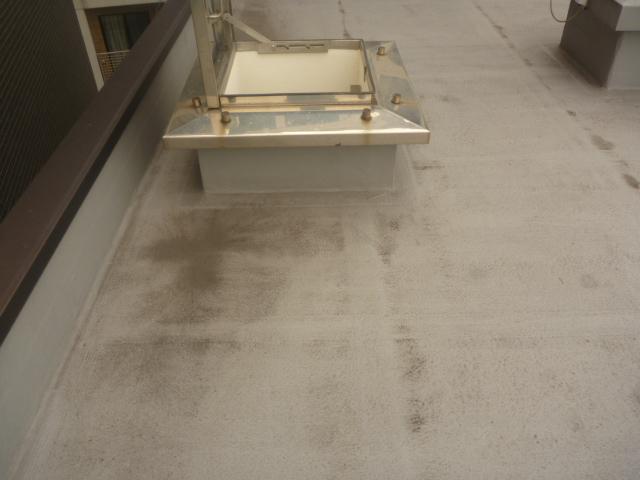 東京都大田区、定期清掃先マンション屋上ルーフハッチ(点検口)と床面